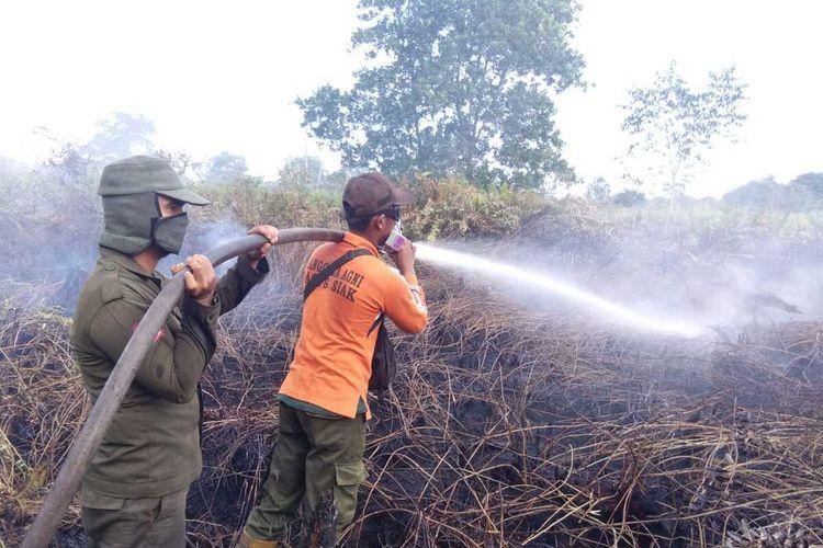 Kebakaran hutan dan lahan di Riau awal tahun 2020. Sumber: kompas.com