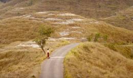 Keindahan alam bukit sabana Sumba di dalam film. Sumber: medium.com
