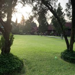 Lapangan luas depan rumah yang bisa digunakan anak atau keponakan untuk bermain lari-larian | Dokumentasi Pribadi