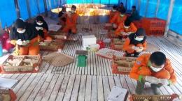 Kegiatan Praktik Pada Jurusan Peternakan di SMKN Pertanian Terpadu Pekanbaru | Dokumen Pribadi