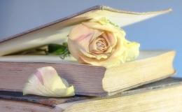 Ilustrasi Sebuah Buku dan Bunga Mawar (sumber gambar: pixabay.com)