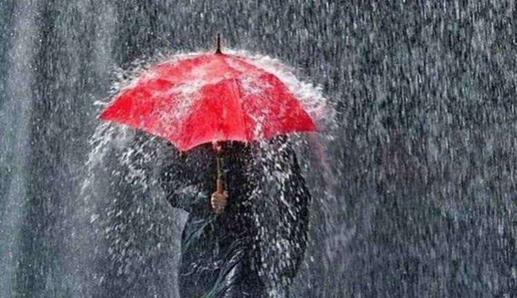 Ilustrasi Hujan Sumber Foto Trubus.id/Istimewa