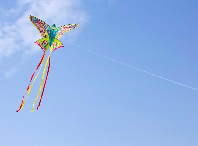 Layang-layang terbang tinggi, putus, dirisak angin, singgah di ranting letih (Ilustrasi: acosta.co,id)