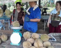 Kedai durian di Penang (foto: dokpri)