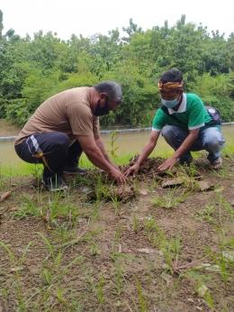 Penanaman Pohon Pertama oleh Bapak Kepala Desa Banjarharjo/dokpri