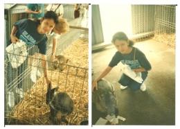 """Dokumentasi pribadi/Layaknya sebuah peternakan, mereka mempunyai """"barn"""" atau kandang2 hewan2 yang diternakan mereka. Disini, ada beragai macam kangguru dan wallaby, koala, serta womba! Wombat menag sangat unik, bukan beruang tetapi sangat tambun serta gemuk!"""