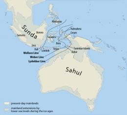 Sunda dan Sahul Plateau- Maximilian Dörrbecker (Chumwa) via Wikimedia Commons
