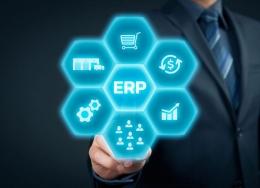 SUMBER: http://www.erp4salesforce.com/