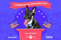 'Indoguration' Major untuk jabatan barunya   Foto diambil dari CampaignLive