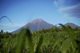 Gunung Semeru (Dok.Pribadi)