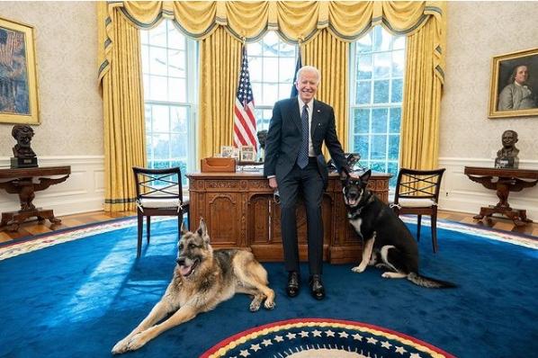Major (kanan) dan Champ (kiri) berpose dengan Joe Biden di Kantor Oval. Official White House Photo by Adam Schultz