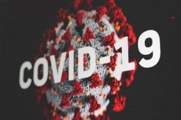 Virus corona atau covid 19 yang melanda Indonesia (Sumber : Martin Sanches via unsplash.com)