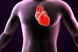 Source: https://www.brookefieldhospital.com/heartcare.php
