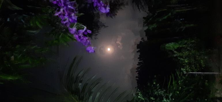 malam terang bulan: dokpri