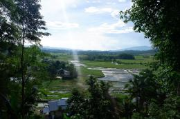 Hamparan hijau di belakang Kampung Adat Tarung (Dokpri)