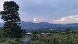 Perkebunan dan Kota Tomohon (Dokumen Pribadi)