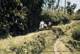 Pulang salat Id atau bermain di lapangan berlanjut silaturahmi bersama orang tua menuju rumah kerabat di desa lain (digitalcollections.universiteitleiden.nl/ deepai.org).