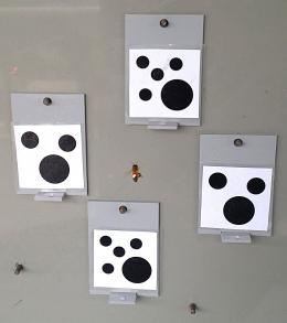 Lebah madu mengerti konsep Zero dalam matematika.Photo : phys.org
