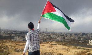 Unsplash/Ahmed Abu Hameeda