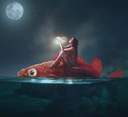 Sang penunggang ikan. (Sumber Ilustrasi: Pixabay)