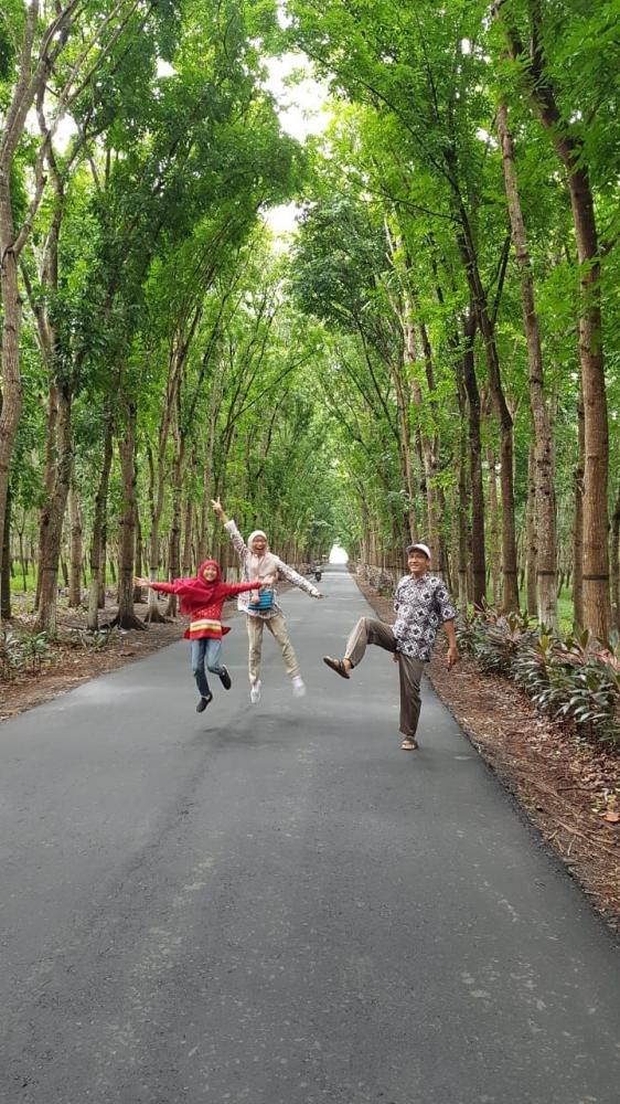 Keterangan : Jalan menuju WAG, Padang Golf, BDR, Air Terjun Sarang Tawon, dan Pantai Bandealit.-Sumber :www.ubaidillah-firdaus.blogspot.com