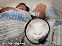 Ilustrasi Milo tidur bersama kakak pertama, kadang berdua suka berantem, sering baikan juga sih. Dokpri