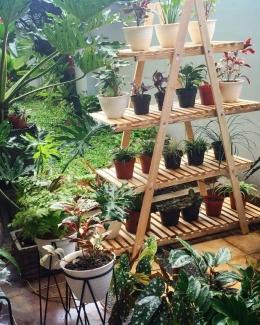Membayar deposit untuk pre-order rak pot tanaman. Dalam 9 hari sudah tiba di rumah. (foto CelestineP)