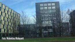 Foto: Universitas Erasmus di Rotterdam-dokpri