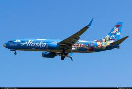 Livery Alaska Airlines yg menawan. Sumber: Evan Dougherty / planespotters.net