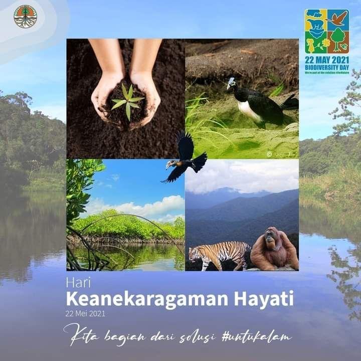 Hari Keanekaragaman Hayati - Foto: FB KLH