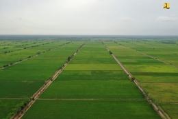 Lahan food estate(Dok. Biro Komunikasi Publik Kementerian PUPR)