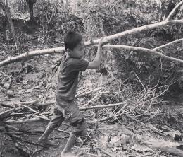 anak-anak negeri Timor bertarung di hutan untuk mencari kayu api. Ilustrasi foto oleh Agustardhy