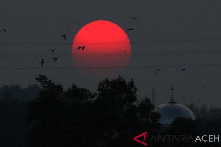 Ilustrasi matahari merah. Sumber: aceh.antaranews.com