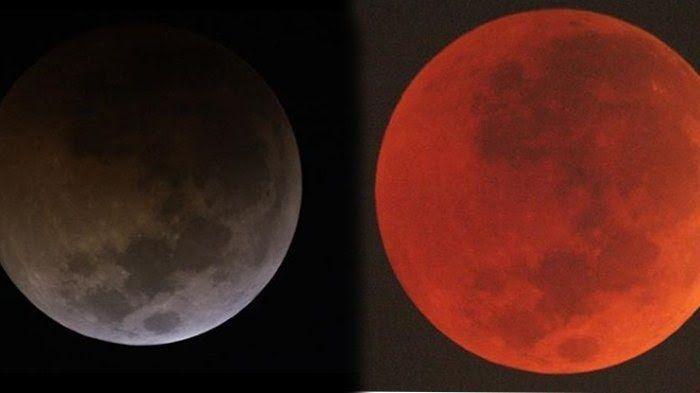 Blood Moon (sumber: tribunnews.com)