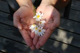 ilustrasi memberi bunga, tanda tetap rendah hati kepada orang lain. (sumber: pixabay.com/GLady)