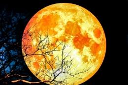 Super blue blood moon (foto kompas)