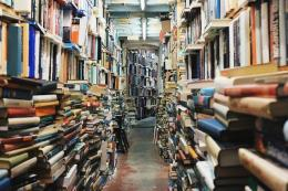 Ilustrasi tumpukan buku di perpustakaan (sumber gambar: pixabay.com)