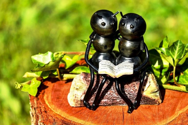 Ilustrasi semut. Sumber: Couleur on Pixabay.com