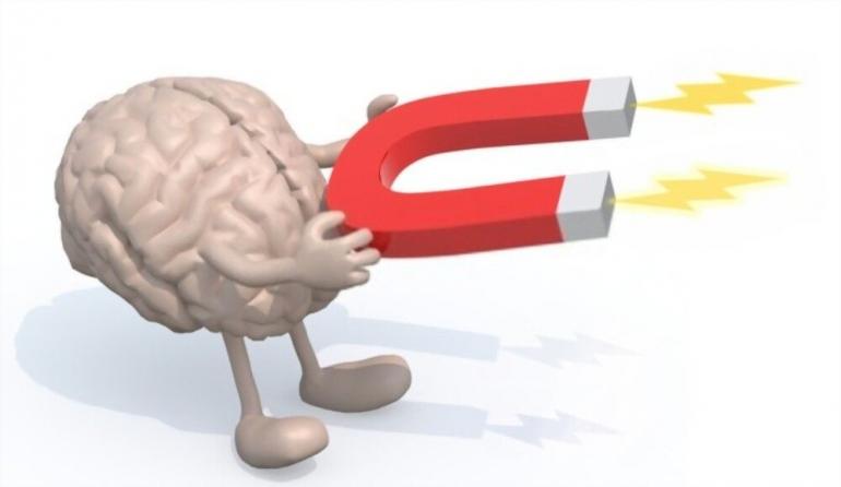 ilustrasi. Human brain arms leg magnet on hands/shutterstock