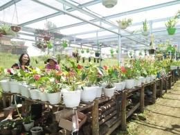 Liburan di kebun bunga (Dokpri)