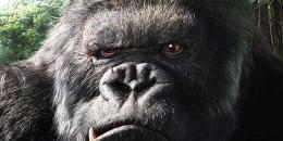 King Kong (Foto: kompas.com)