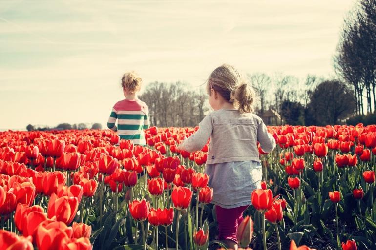 Dunia Anak di Pelupuk Mata   Foto dari Piqsels.com