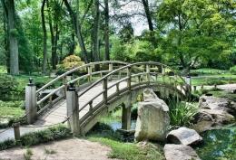 Ilustrasi pemandangan alam sebagai desktop background, sumber: pixabay
