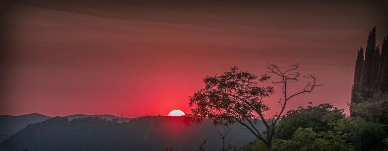 Summer solstice atau titik balik matahari menjadi fenomena utama astronomi bulan Juni (Josep Monter Martinez/Pixabay)