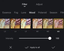 Berbagai macam pilihan filter video. Sumber : tangkapan layar VN