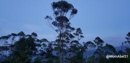 Menjelang senja (Foto: dokpri)