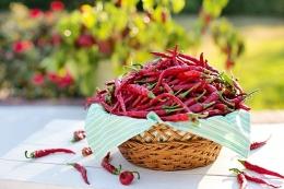 manfaat makana pedas yang mungkin baru kamu tahu (Source: Pixabay/Jellwellington)