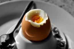 Ilustrasi telur ayam rebus. Sumber: Karl Allen Lugmayer on Pixabay.com