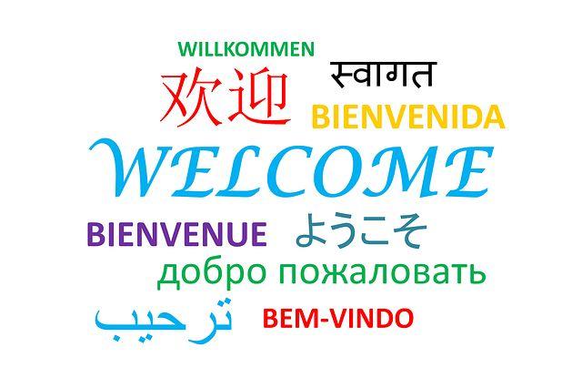 Ilustrasi ragam bahasa di dunia (sumber gambar: pixabay.com)