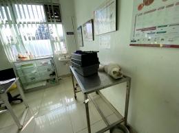 Timmy Divaksin di Rumah Sakit Hewan Provinsi Jawa Barat. Sumber: dokumentasi pribadi.